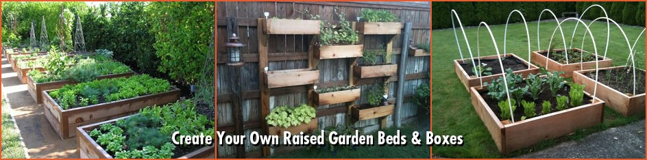 CFO_Raised_Garden_Beds